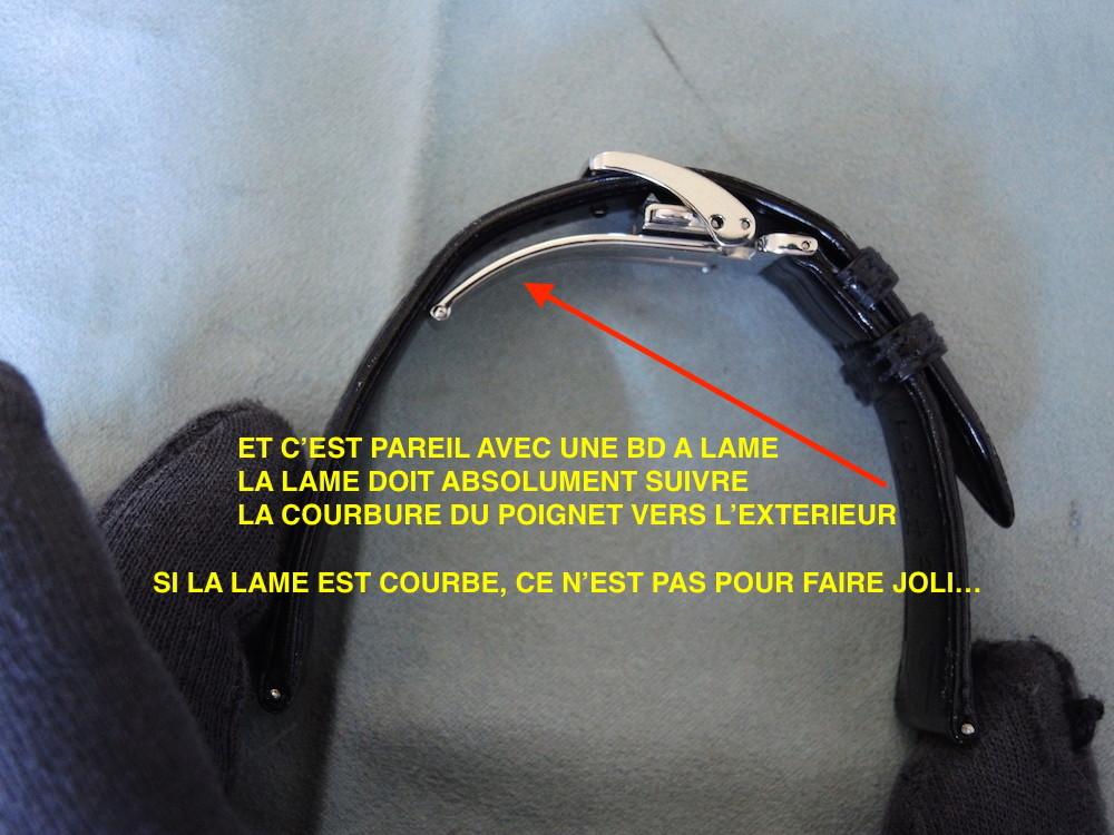 http://i35.servimg.com/u/f35/09/03/48/15/dscn0717.jpg