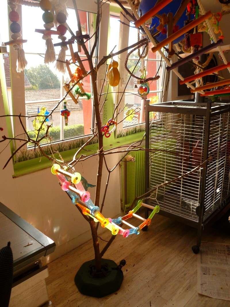 forum construction d 39 un arbre pour mes grisou constructions. Black Bedroom Furniture Sets. Home Design Ideas