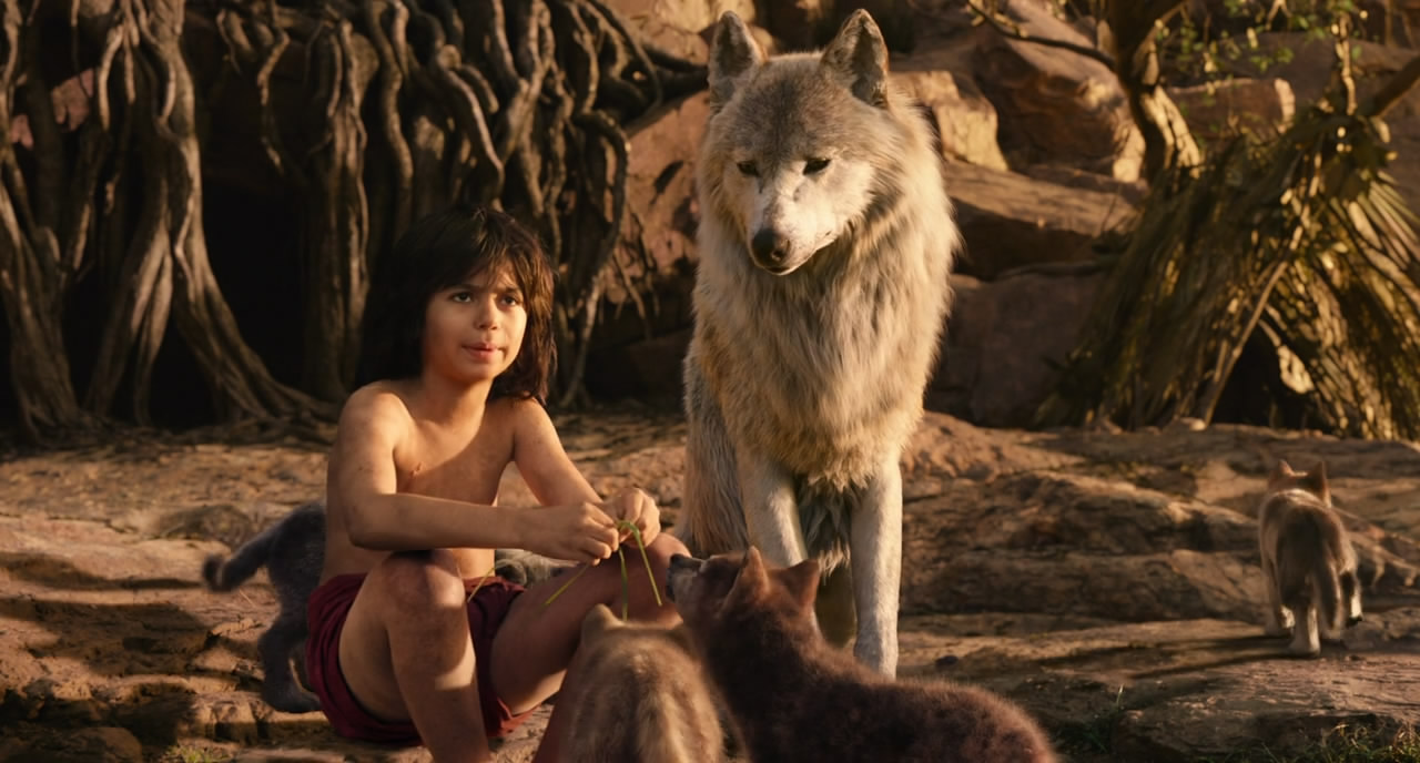 Download The Jungle Book