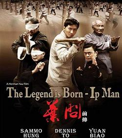 فيلم Ip Man The Legend Is Born 2010 DVDRip مترجم