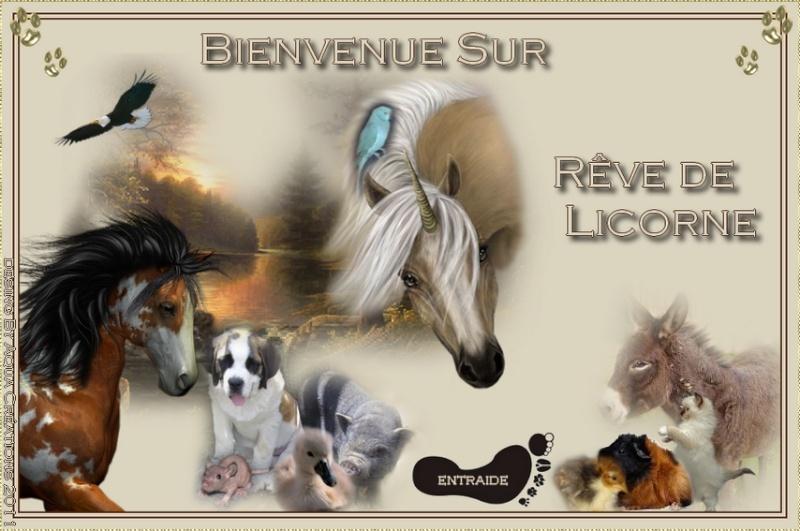 Forum Rêve de Licorne et association Unicorn's Dream SAUVETAGE DE NOS AMIS LES ANIMAUX PAR PETITES ANNONCES. PROTECTION ET INFORMATIONS MALTRAITANCE ANIMALE.