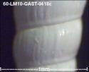 60-lm267.jpg