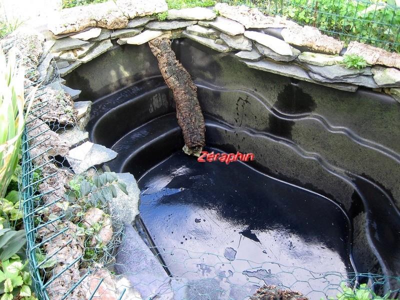 Am nagement d 39 un bassin pr form pour emydid s - Bassin d ornement preforme besancon ...