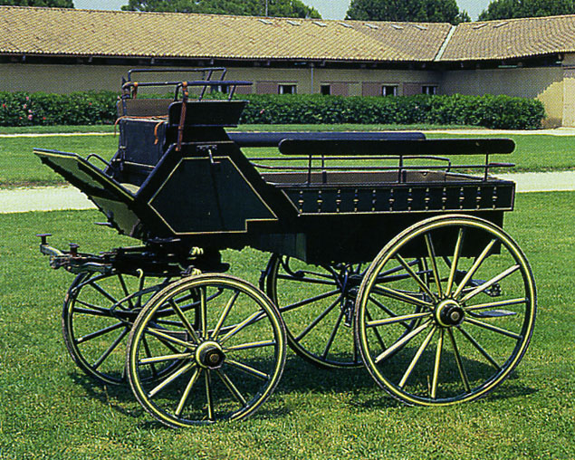 wagonn10.jpg