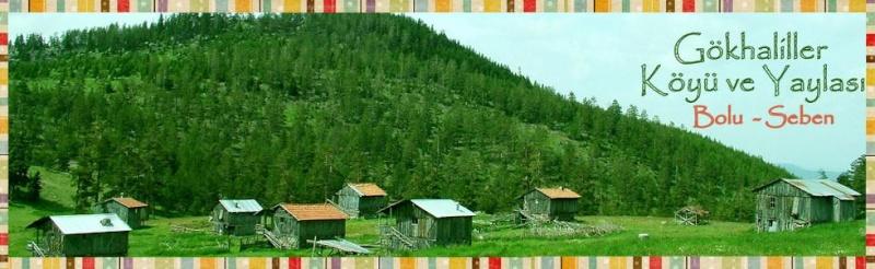 G�khaliller K�y�  Resmi Sitesi Bolu / Seben 2010
