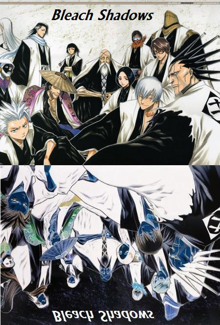 Bleach:Shadows