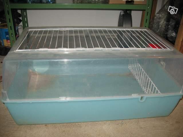 cage plexiglass. Black Bedroom Furniture Sets. Home Design Ideas