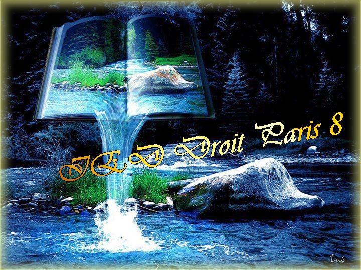 IED Droit Paris 8