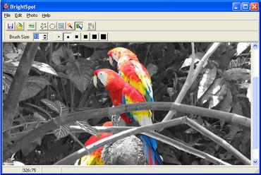 برنامج تحرير الصور ImageElements BrightSpot v1.2
