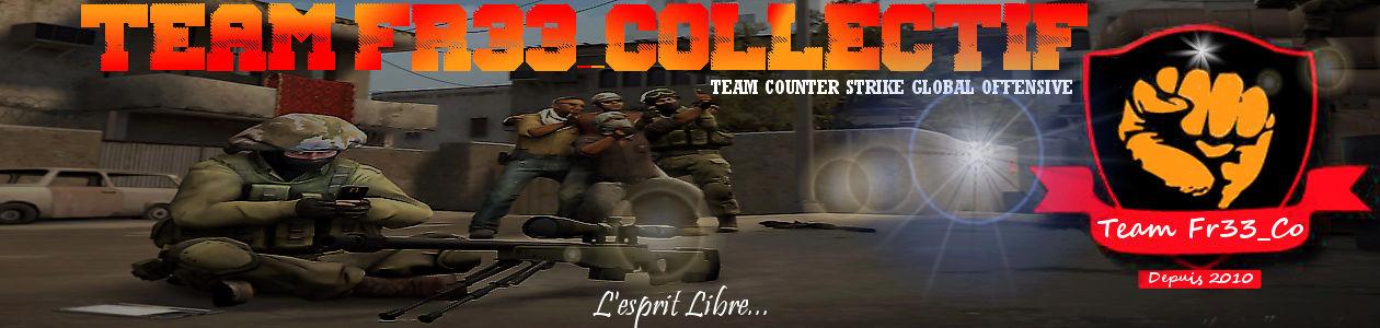 www.teamfreeco.com