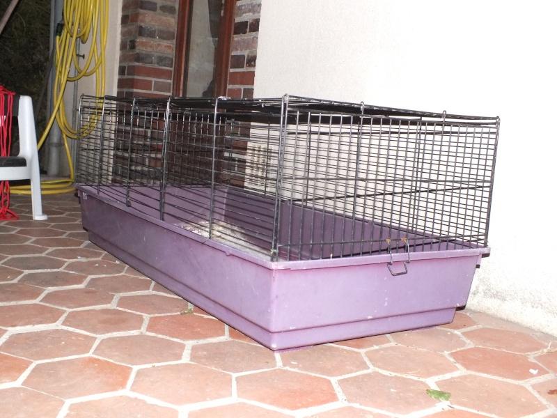 donne cage lapin cochon d 39 inde. Black Bedroom Furniture Sets. Home Design Ideas