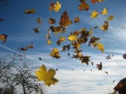 Un vent d'espoir dans LES 4 SAISONS vent_e10