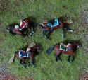 Concours chevaux morts 1° Empire.