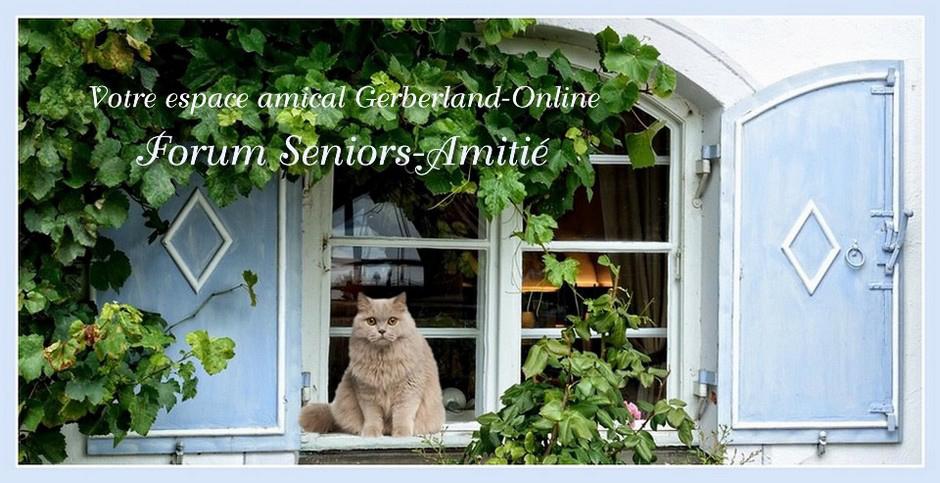 Amicale Gerberland-Online Forum Seniors Amitié