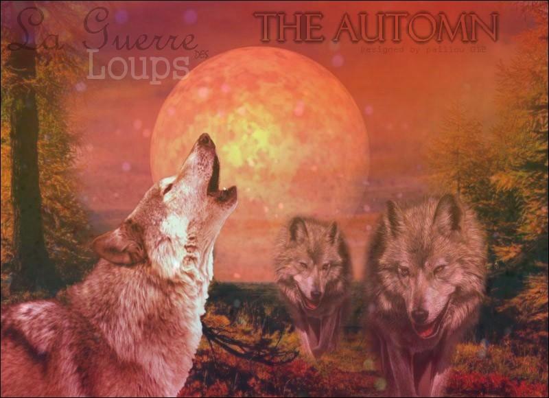 La guerre des Loups