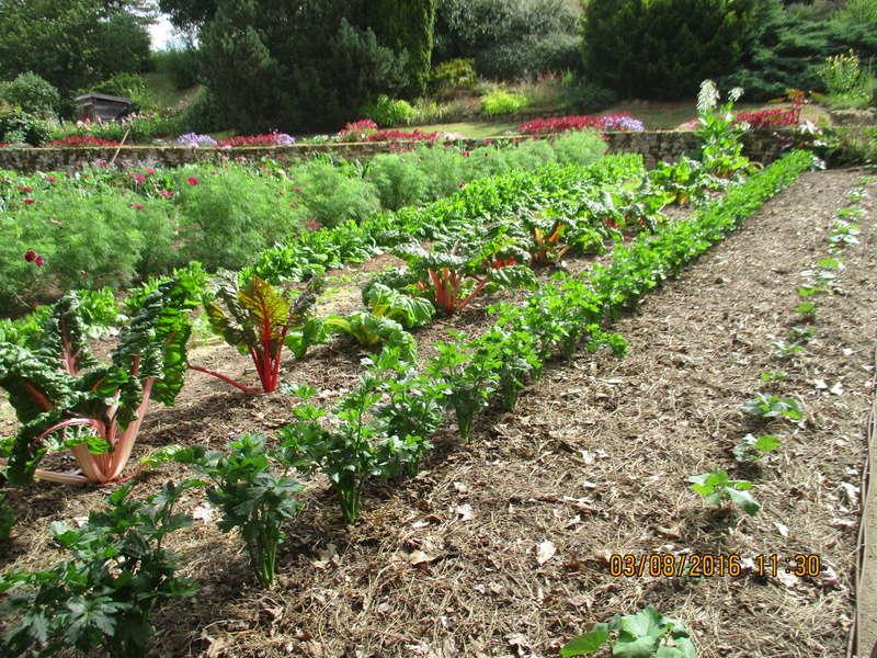 Notre visite les jardins du gu lhoumois 79390 page 5 for Visite de jardins en france