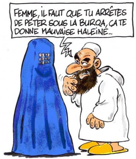http://i35.servimg.com/u/f35/17/27/77/35/burka10.jpg