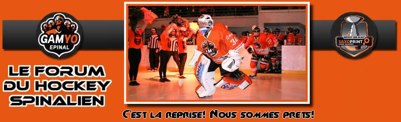 Forum du hockey spinalien (Gamyo d'Epinal)