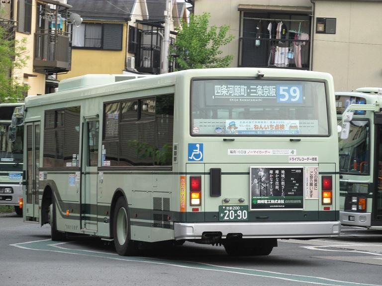 photo486.jpg