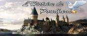 Cours d'Histoire de Poudlard