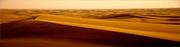 http://i35.servimg.com/u/f35/19/24/43/29/desert11.jpg