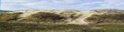 http://i35.servimg.com/u/f35/19/24/43/29/dunes_10.jpg