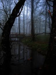 Marais des Âmes Perdus