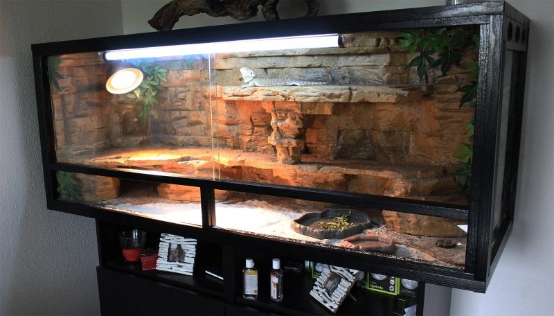 fabriquer un terrarium comme un pro. Black Bedroom Furniture Sets. Home Design Ideas