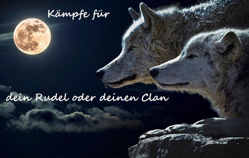Drachen-Clan und Wolf-Clan