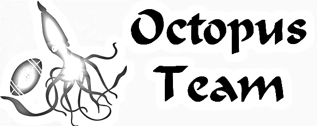 Octopus Team