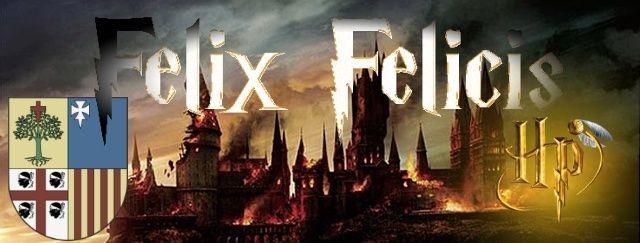 Foro Felix Felicis