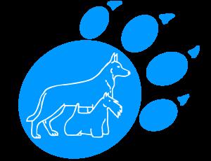iDOG-Форум о собаках