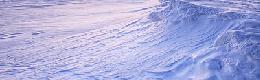 Terres nordiques