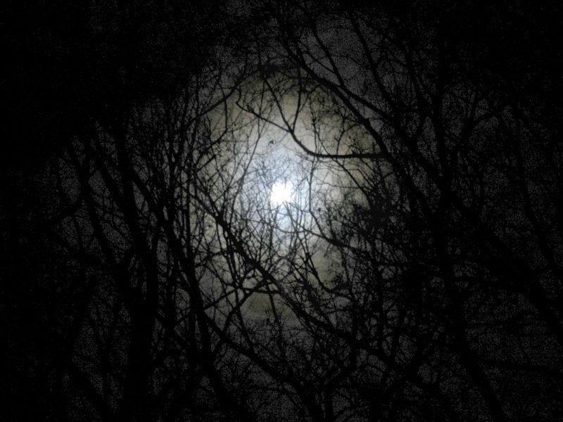 Tolderas' Last Moon