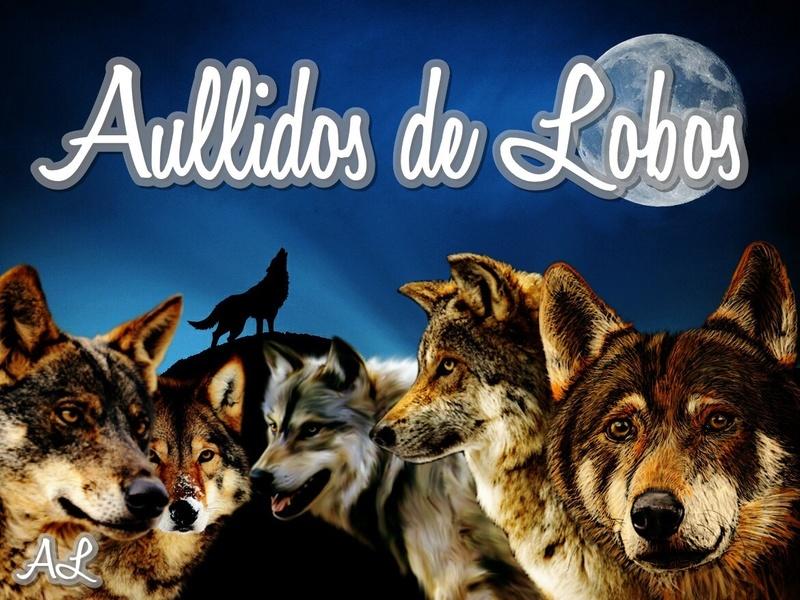 Aullidos de Lobos