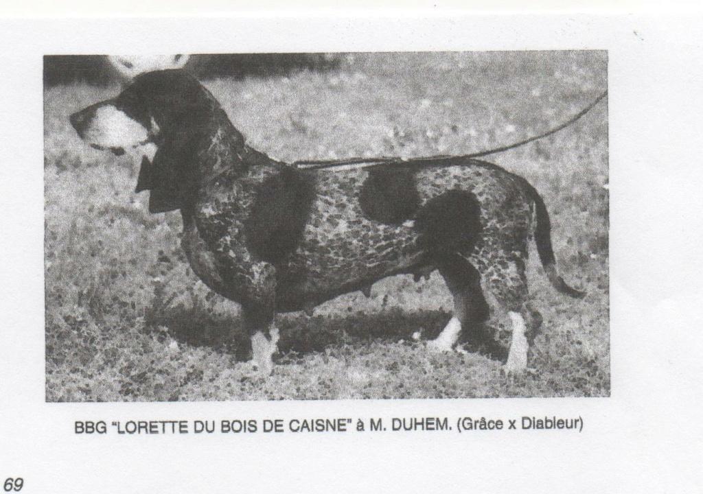 lorett10.jpg